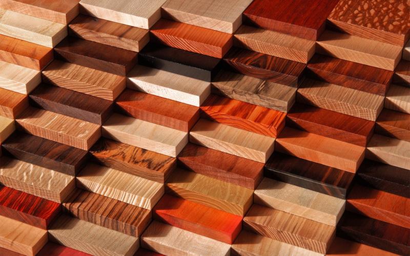 Image result for породы древесины
